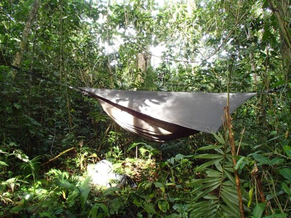 Remote Jungle Medicine