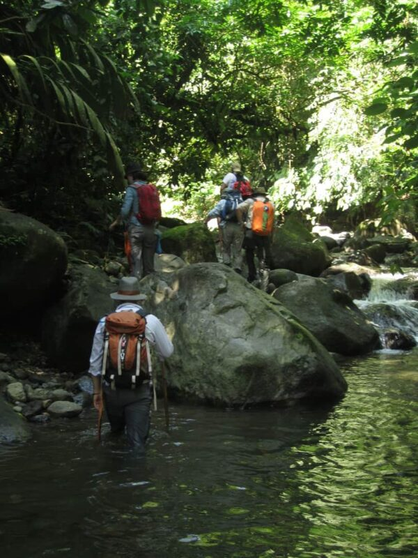 Wilderness Medicine in the Jungle